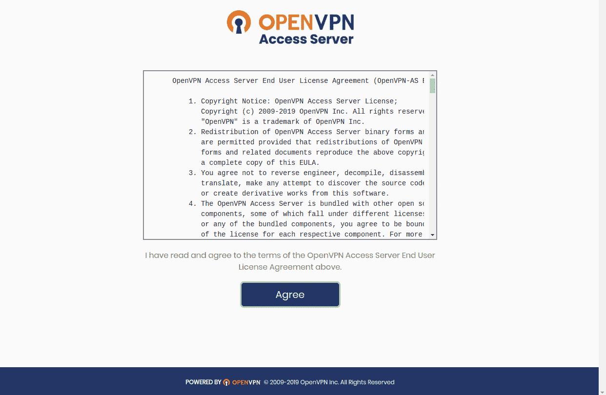 openvpn terms